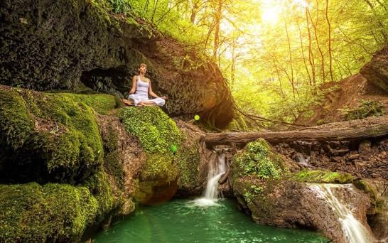 Gaia Meditation Meditation Forest