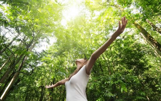 Gaia Meditation Awareness Expansion