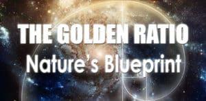 the golden ratio: nature's blue print