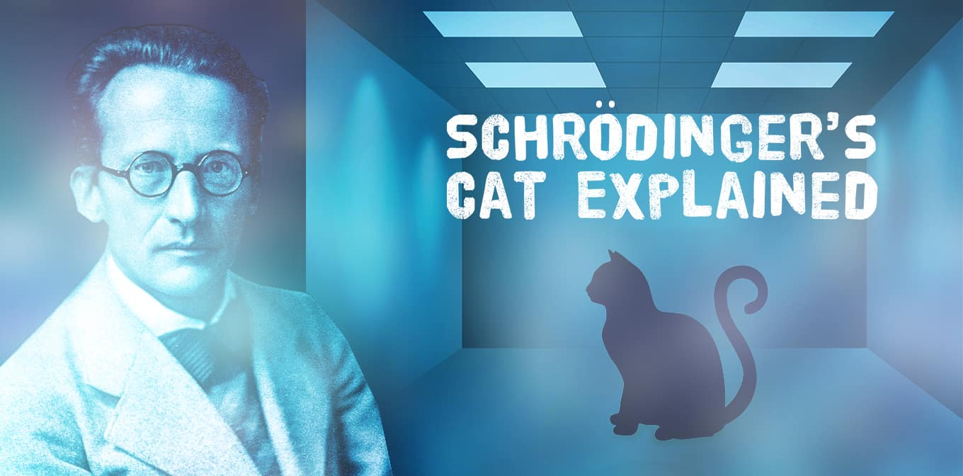 Weirdness Of Quantum Theory : Schrödinger's Cat Explained